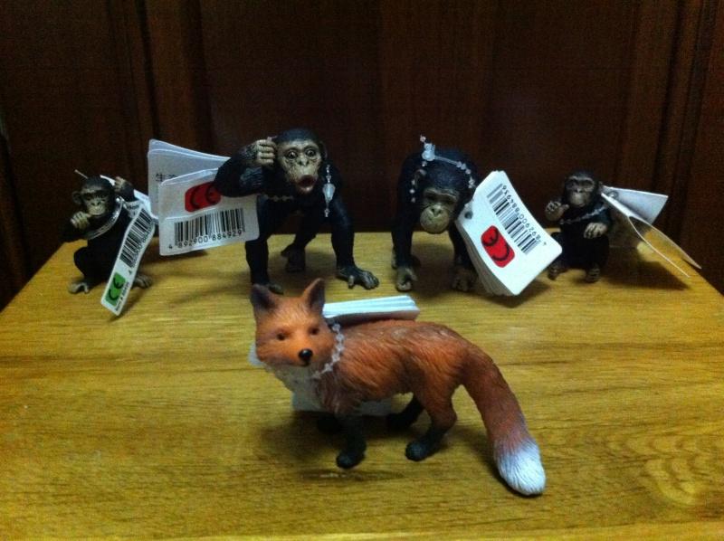 chimpanzee and fox Img_2019