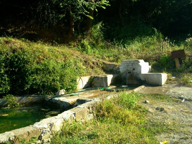 louzi3a (zerd) au village de TAREMANT d'aokas  (14-06-2013) Photo481