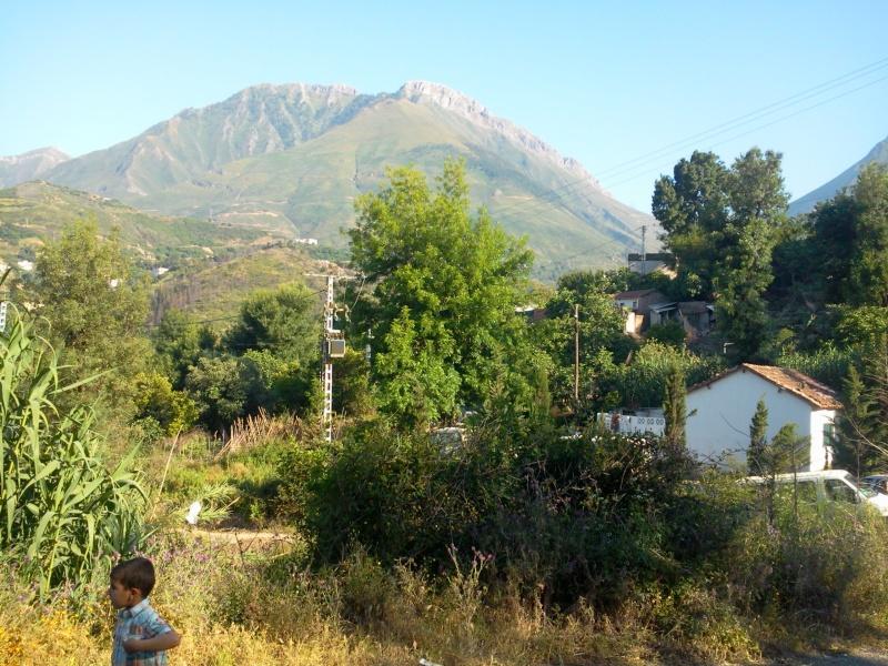 louzi3a (zerd) au village de TAREMANT d'aokas  (14-06-2013) Photo499