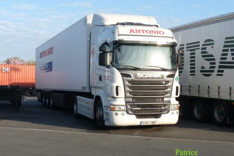 Antonio Marco  (San Isidro - Alicante) 001_co15