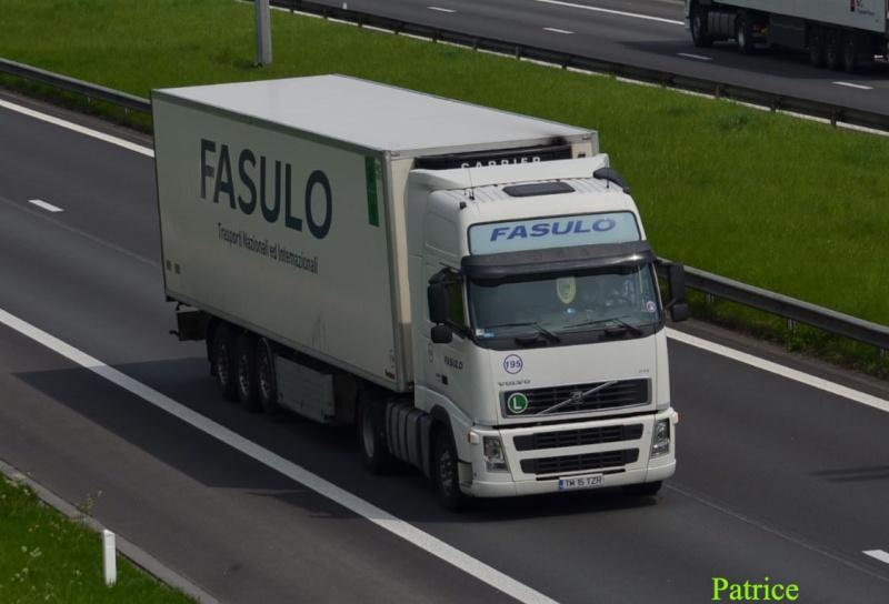 Fasulo (Caiazzo) (CE) 104a_c10