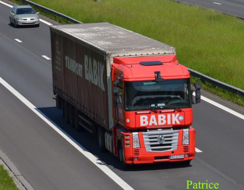 Babik 288p_c10