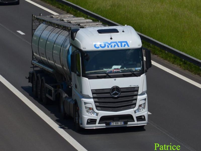 Comata (Feuchy, 62) 326p_c10