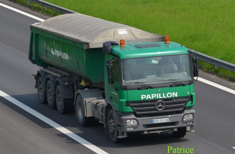 Papillon Tp  (Bondues, 59) 362p_c10