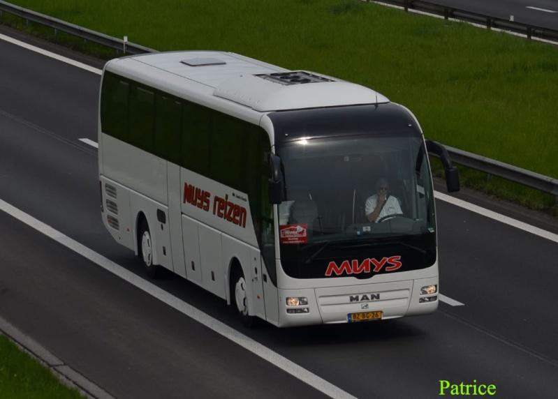 Cars et Bus des Pays Bas  - Page 4 410a_c11