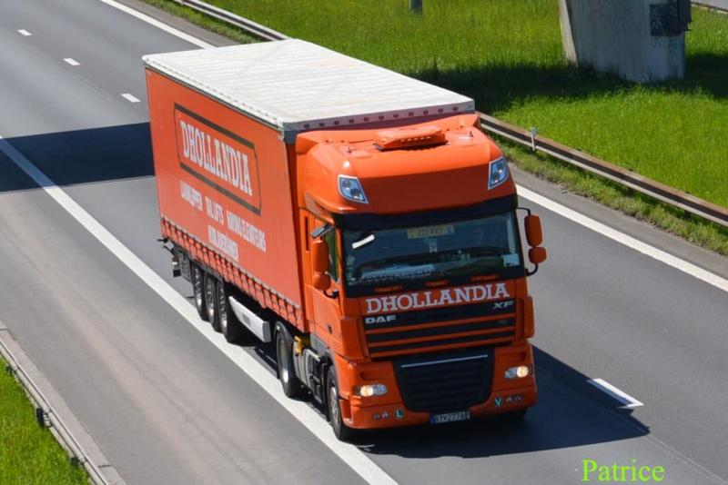 Dhollandia (Lokeren) 42p_co10