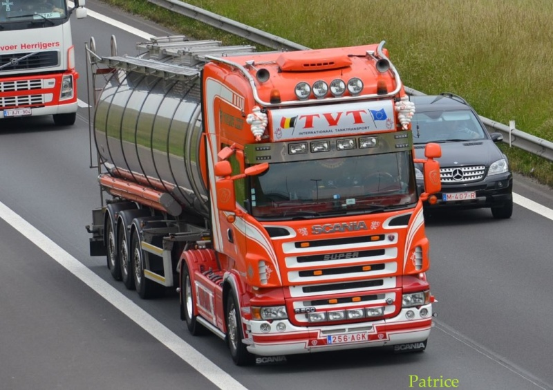 TVT (Transport Van Tricht) (Asse)(groupe Mervielde) - Page 2 81po10