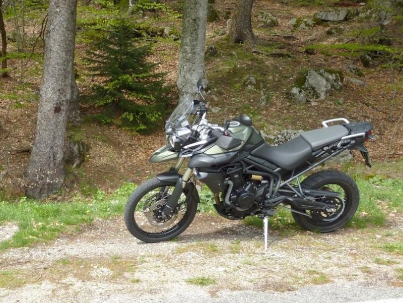 Mon Tiger 800 XC matte khaki green 13050610