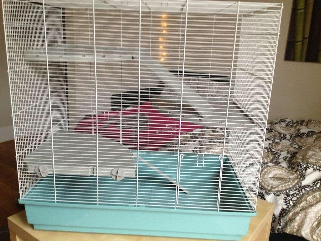 Une bonne cage pas chère? C'est possible!  Img_1014