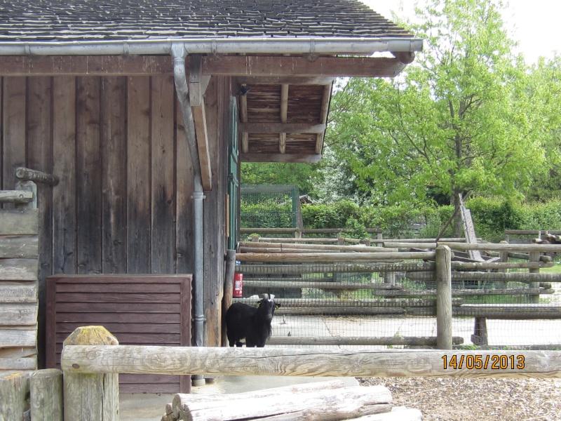 Notre séjour du 14 au 16 mai 2013 au Ranch Davy Crockett Img_1424