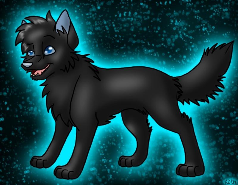 Fiches des loups 21303_10