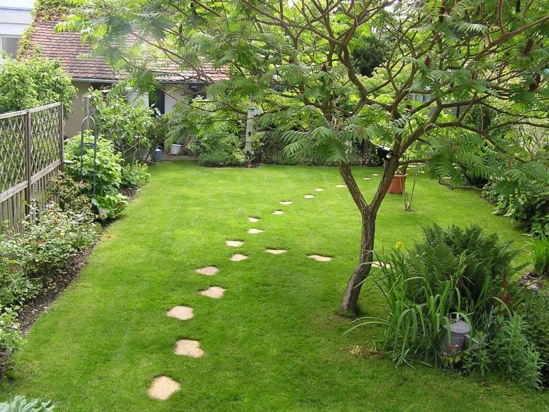 Vues du jardin Jardin14