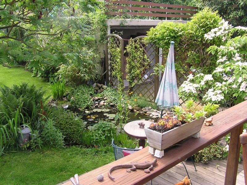 Vues du jardin Jardin15