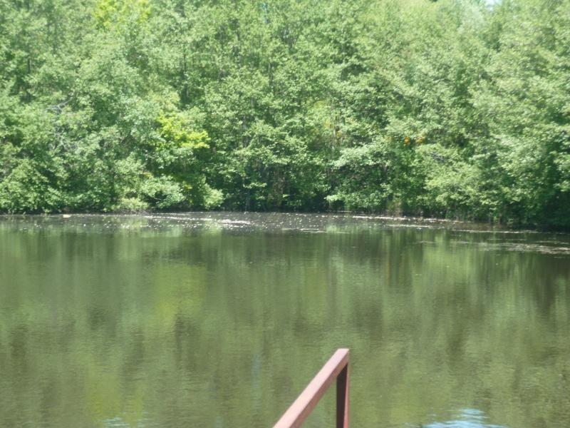 Mon petit coin de pêche... Et un autre qui m'intrigue! P1010513