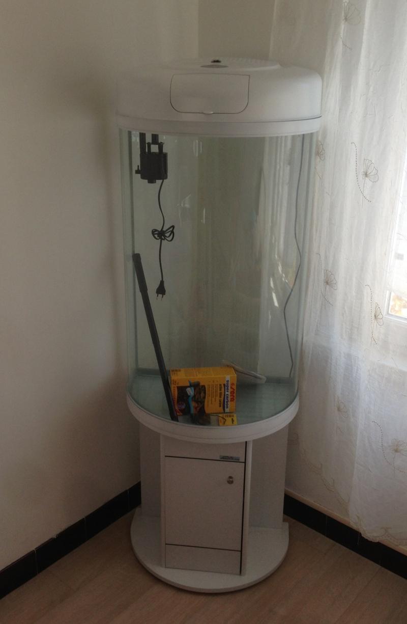 Mon aquarium colonne 28_04_10