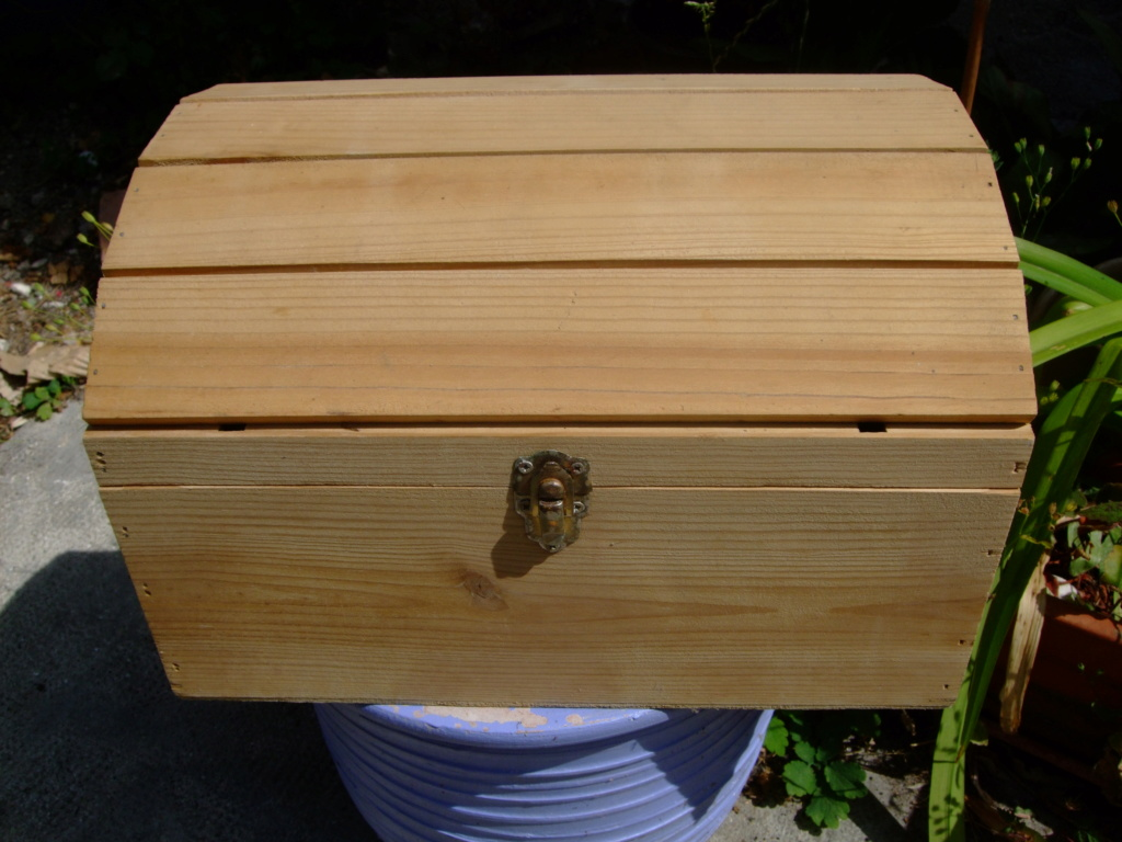 mon coffre .... Dscf6344