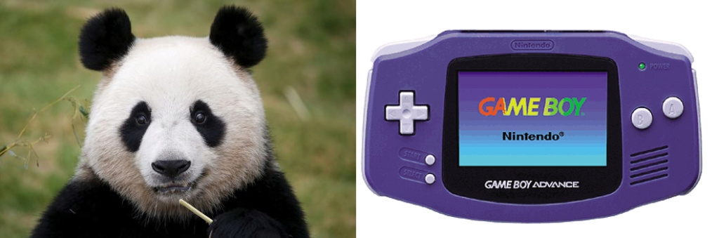 Topic officiel GBA - Page 9 Panda10