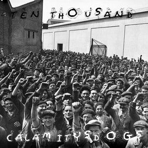 CALAMITYS'DOGS Calami24