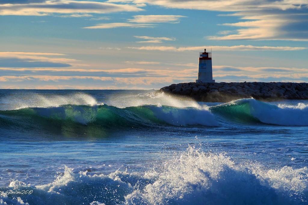 Surf et vagues P1241310