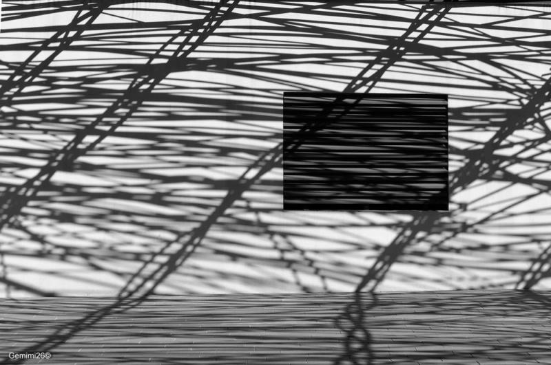 Jeux d'ombres P1310611