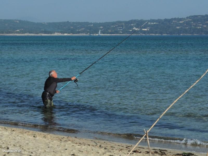 Sur la plage... P2261511