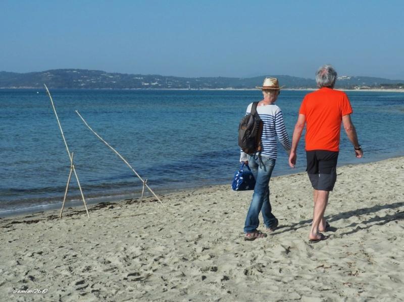 Sur la plage... P2261512