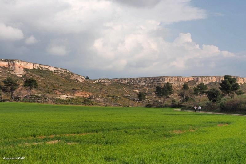 Plateau de vitrolles P3060016