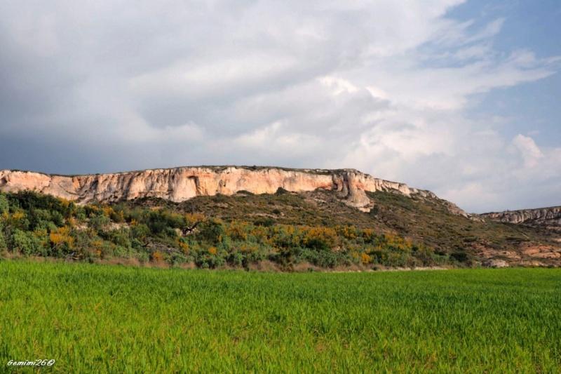 Plateau de vitrolles P3060017