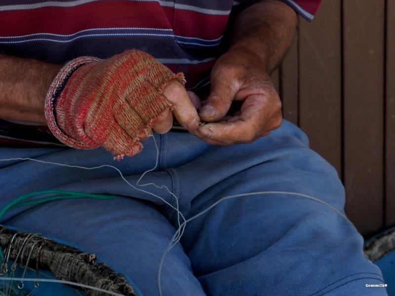 Mains de pêcheur P5200111