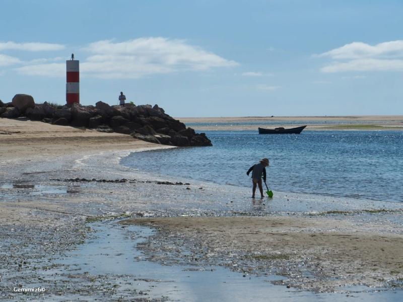 Sur la plage abandonné P5210310