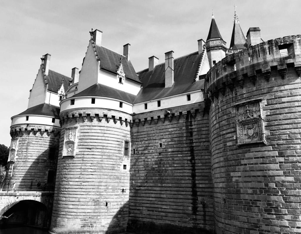 BALADE - De Nantes à Montaigu, la digue, la digue... 2313