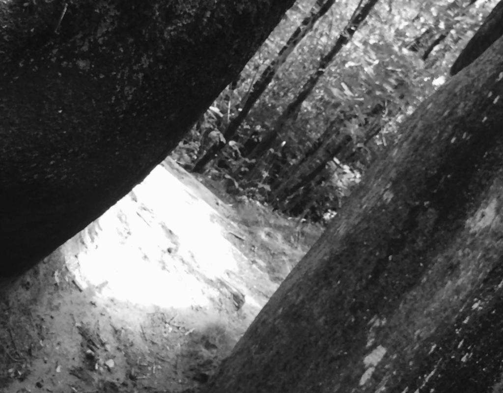 PHOTOS VOYAGE - La Montagne Noire et le Sidobre 2511