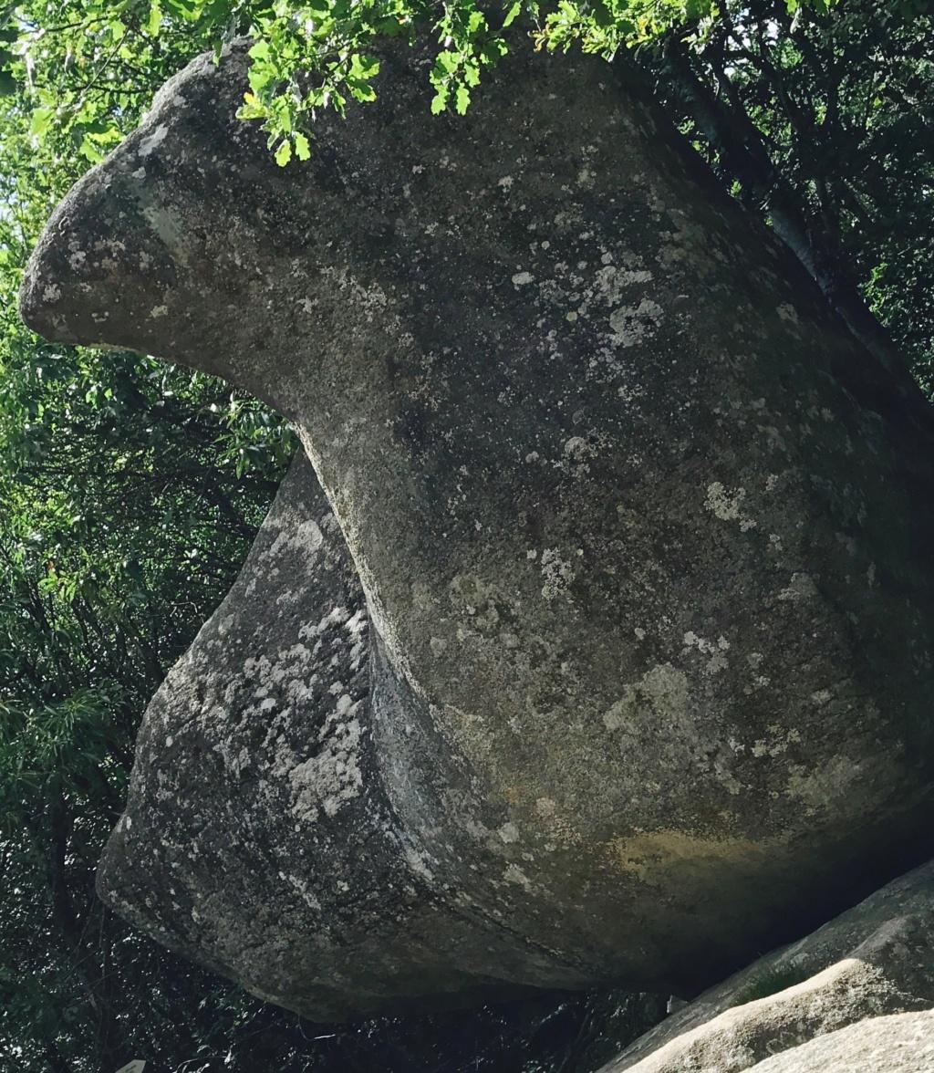 PHOTOS VOYAGE - La Montagne Noire et le Sidobre 3211