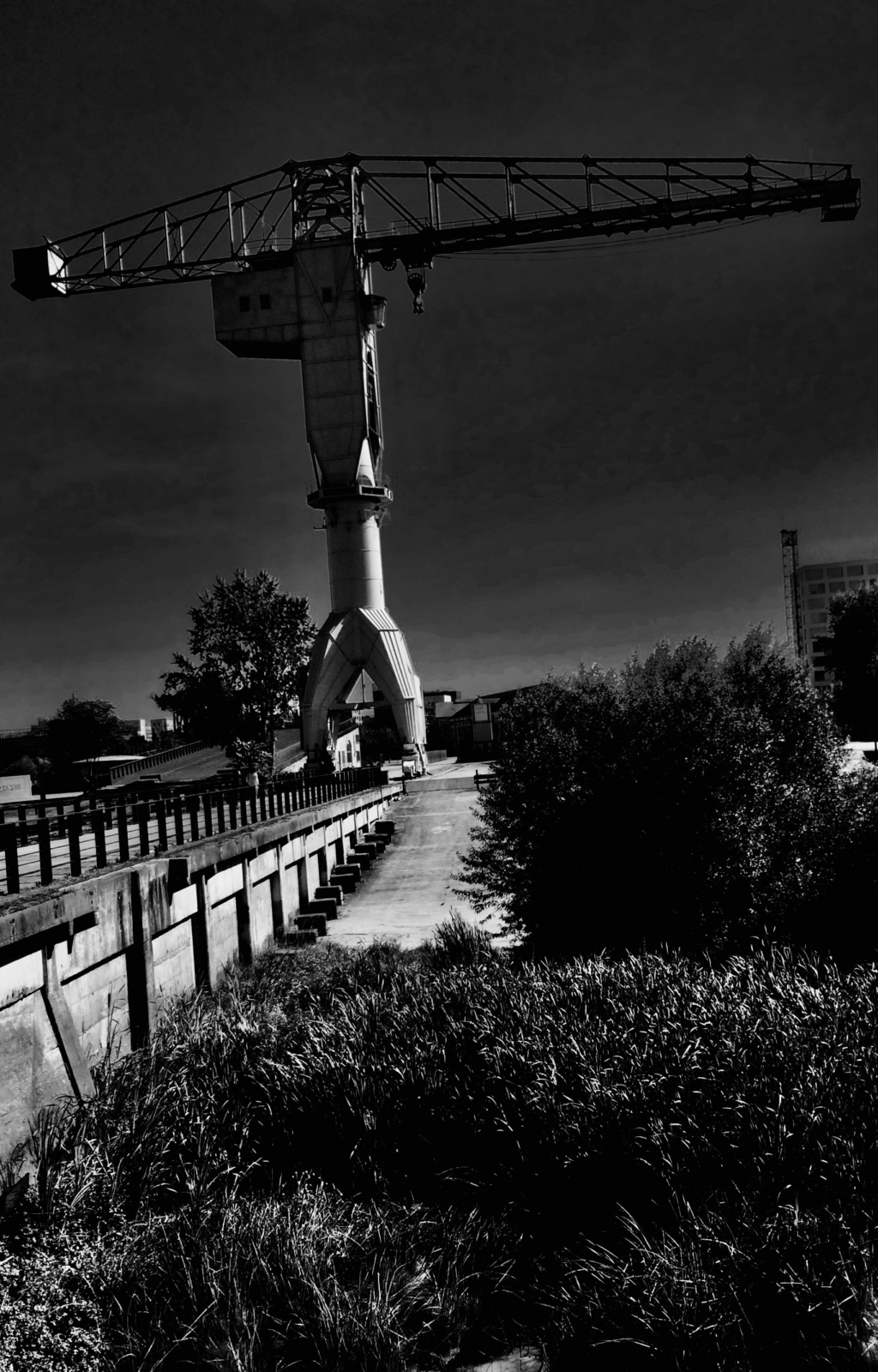 BALADE - De Nantes à Montaigu, la digue, la digue... 4_111