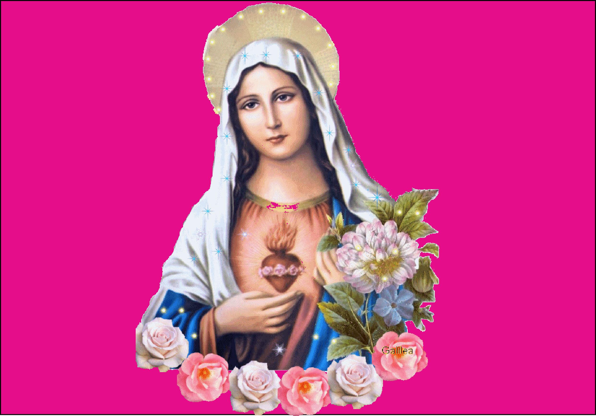 L'ANNÉE MARIALE par la Mère de Chaugy - Page 23 Coeur_10