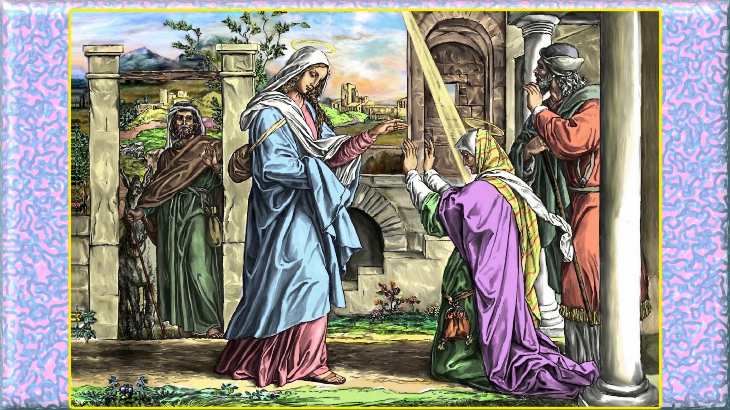 L'ANNÉE MARIALE par la Mère de Chaugy - Page 24 La_vis11