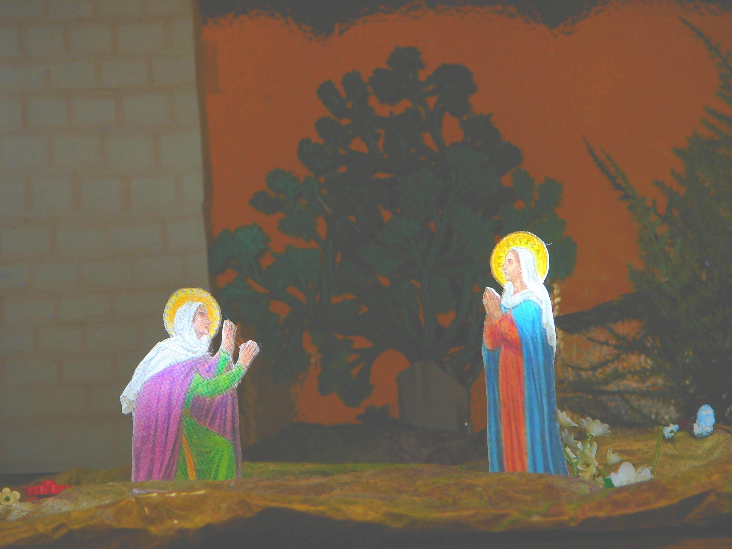 L'ANNÉE MARIALE par la Mère de Chaugy - Page 25 La_vis15