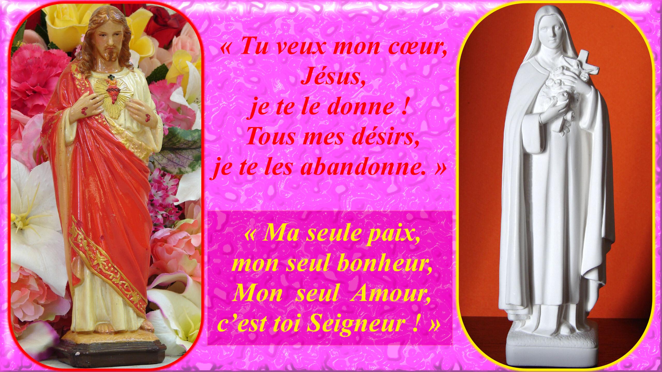 L'ANNÉE MARIALE par la Mère de Chaugy - Page 18 Le_sac16
