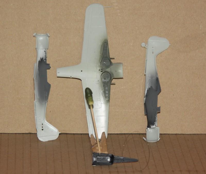 FW 190 F 8 REVELL 1/72 Img_0316