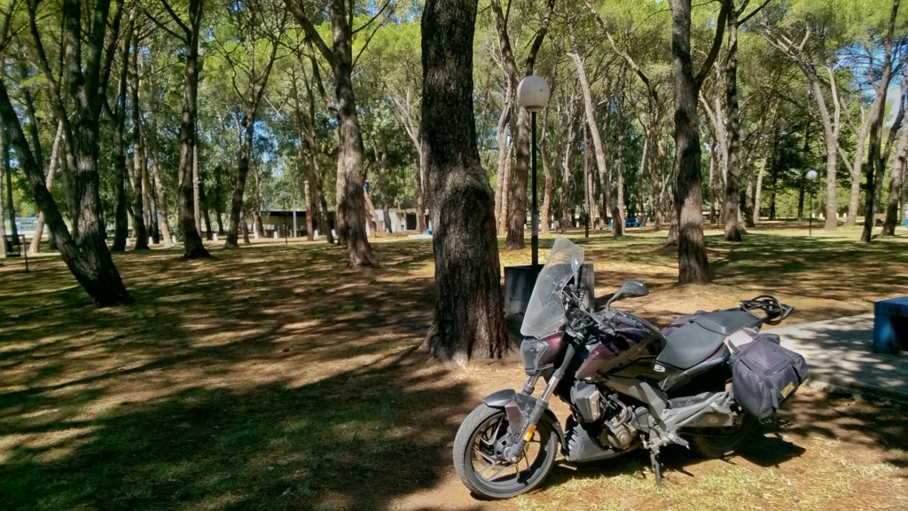 viaje con la glotona (D400) Wp_20112
