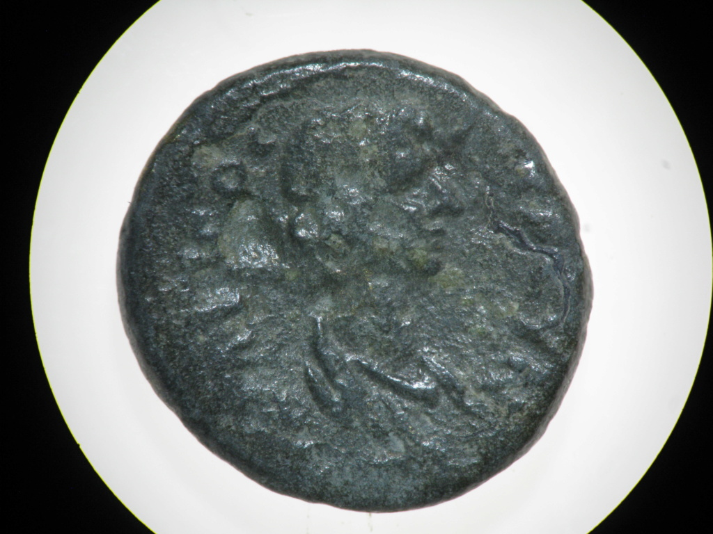 ID petits bronzes Img_7211