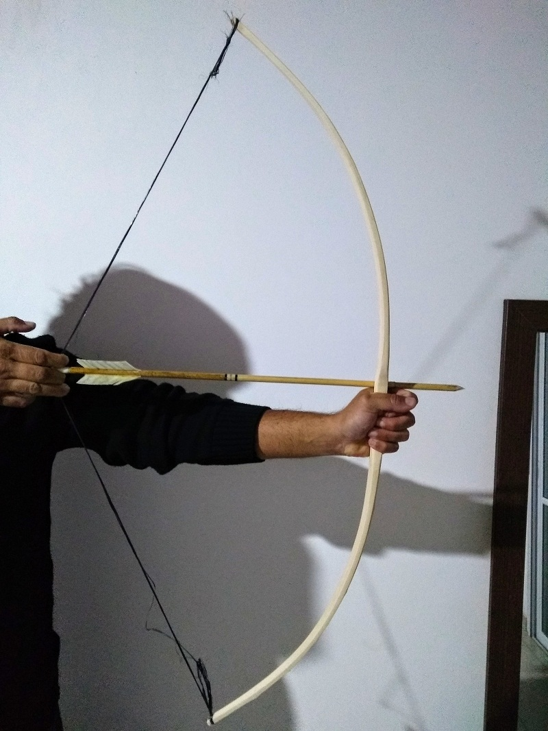 Pequeño arco de ligustro Img_0210