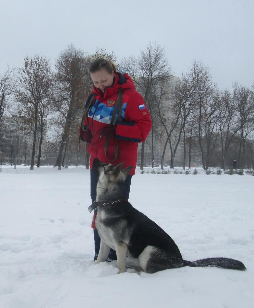 Бирюса Вом Истхаус (Санкт - Петербург) 10110