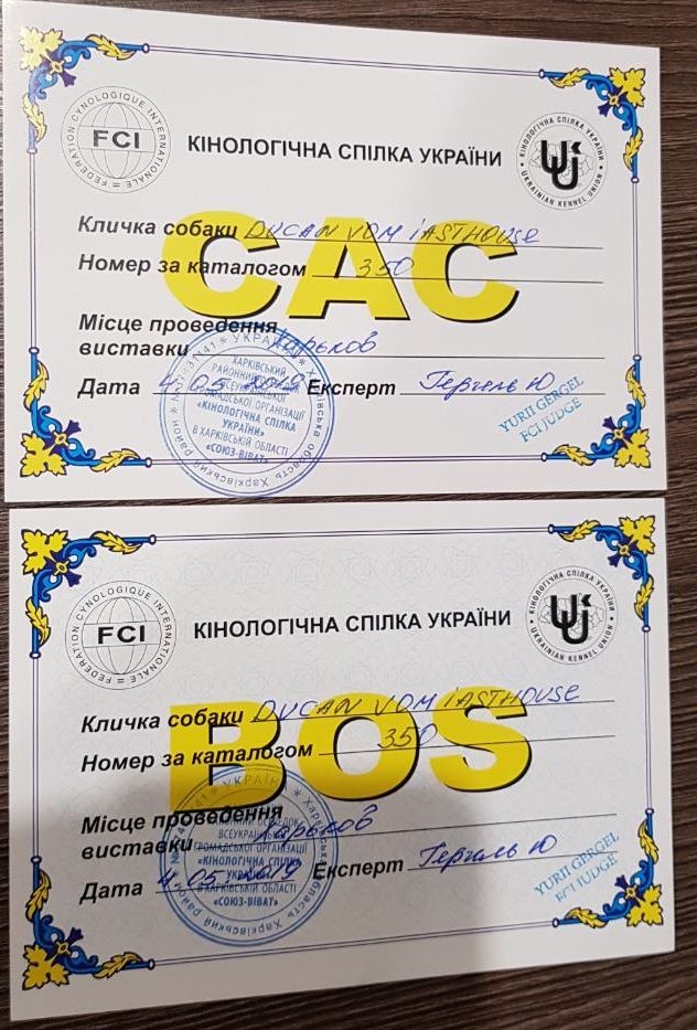 "04-05 мая 2019 ""Харьковская Весна-2019"" CAC-CACIB Viber_25"