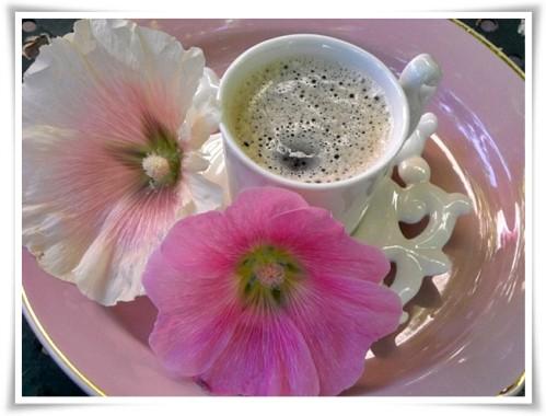 samedi et dimanche,début des vacances!!! Cafe-f10
