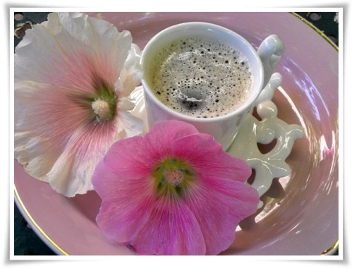 Lundi 11 mars Cafe-f11