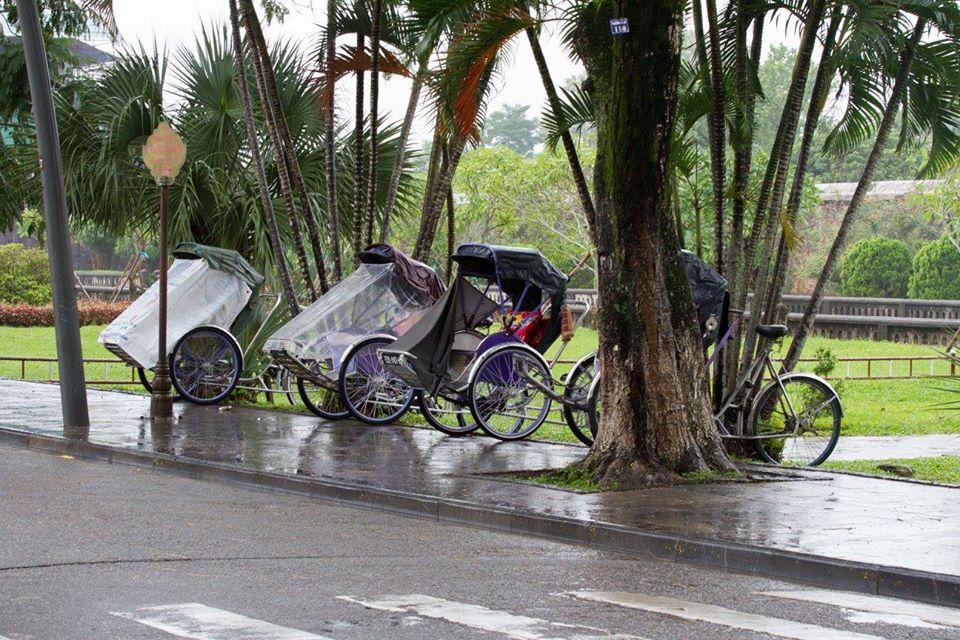 :Viet Nam qua những tấm hình.  414ae810