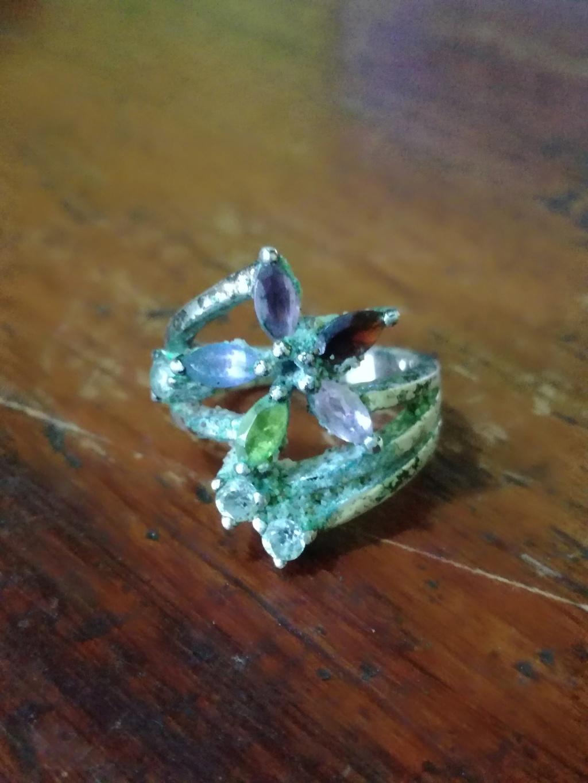 un anillo  Img_2011