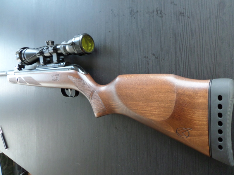 Gamo Hunter 440AS IGT 5.5mm Sam_1812
