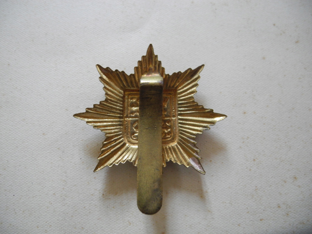 INSIGNE DE COIFFURE A IDENTIFIER Dscn6641